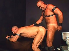 Leather bear spreads his ass for dick